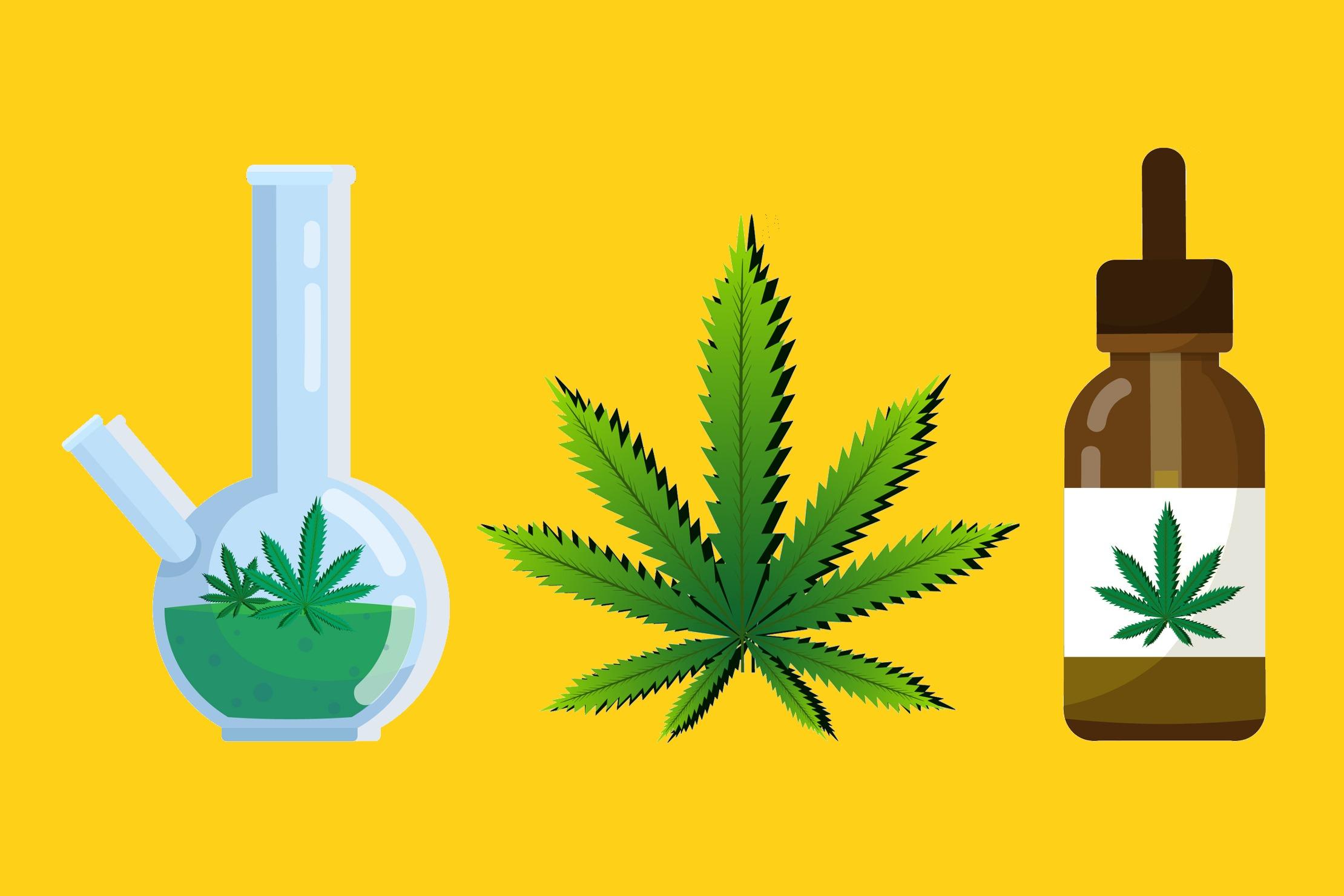 La consommation de cannabis est permise au Canada, mais elle n'est pas inoffensive. Pour éviter de mauvaises surprises, il vaut mieux s'informer.